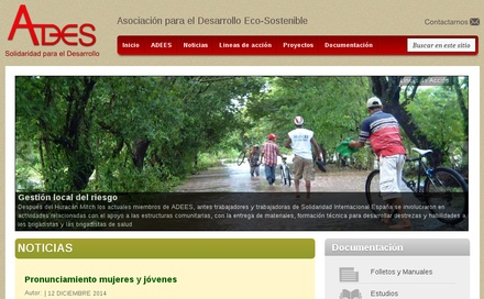 Sitio Web ADEES